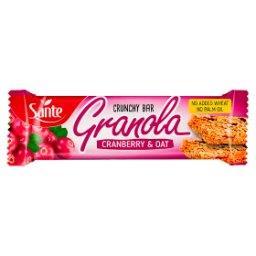Chrupiący baton granola owsiany z żurawiną