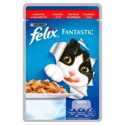 Fantastic Karma dla kotów z wołowiną w galaretce