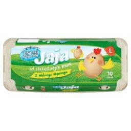 Jaja z wolnego wybiegu L 10 sztuk