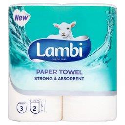 Strong & Absorbent Ręczniki papierowe 2 rolki