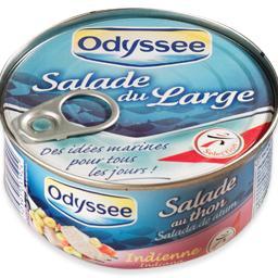 Salada indiana com atum