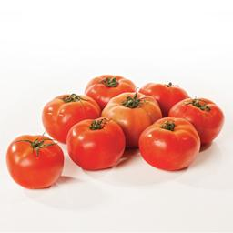Tomate 67/82